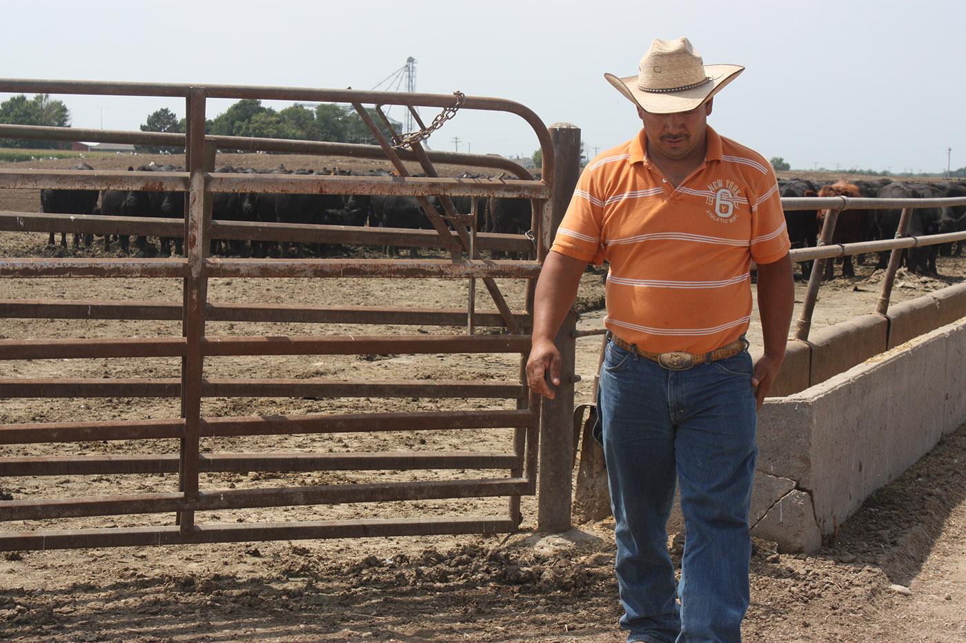 Crawford Cattle Testimonial